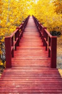 Bridge_Red